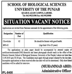 University of the Punjab  Chawkidars Jobs