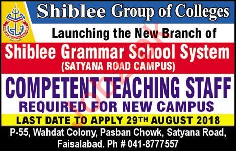 Shiblee Group of Colleges Faisalabad Jobs 2018 for Teachers