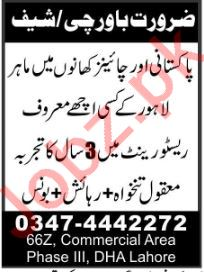 Cheff required for Restaurant