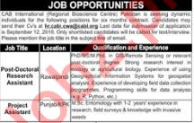 Post Doctoral Research Assistant & Project Assistant Jobs