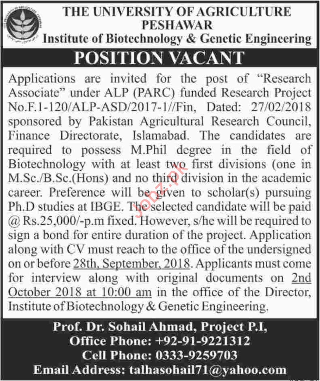 IBGE Institute of Biotechnology & Genetic Engineering Jobs