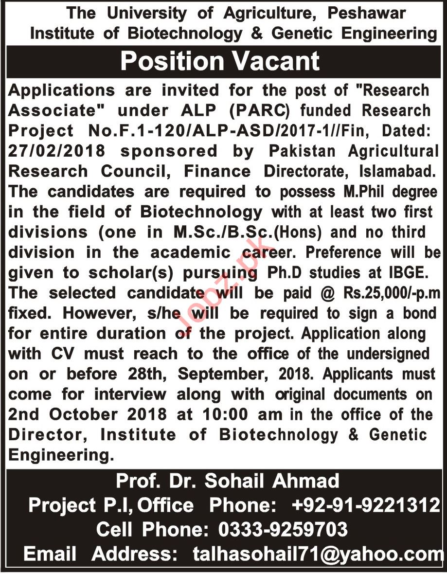 Institute of Biotechnology and Genetic Engineering Jobs