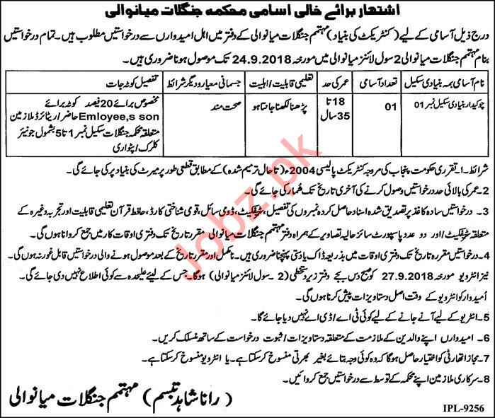 Forest Division Chowkidar Job 2018 in Mianwali