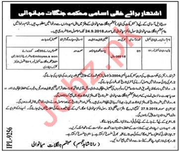 Forest Department Mianwali Watchman Jobs