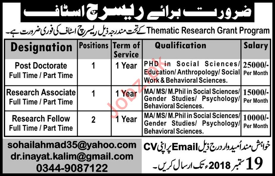 Thematic Research Grant Program Post Doctorate Jobs