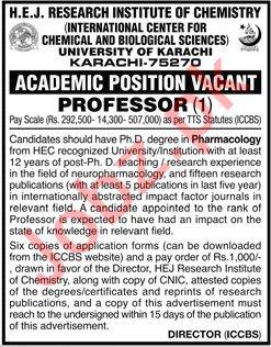 HEJ Research Institute of Chemistry Professor Jobs