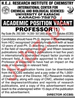 HEJ Research Institute of Chemistry Professor Jobs