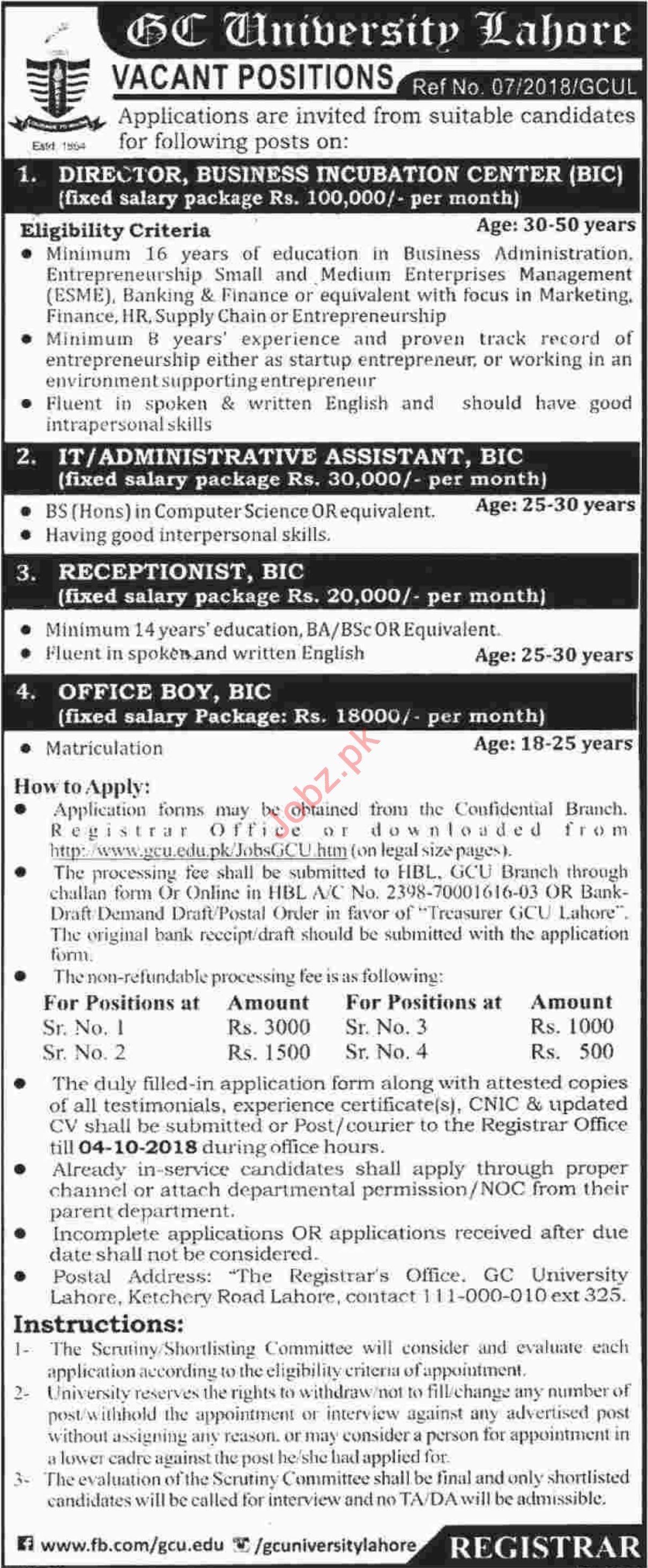 GC University Lahore Jobs for Director & IT Assistant