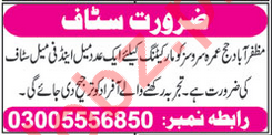 Marketing Jobs 2018 in Muzaffarabad AJK