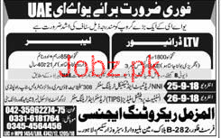 HTV Drivers and Labors Job in UAE