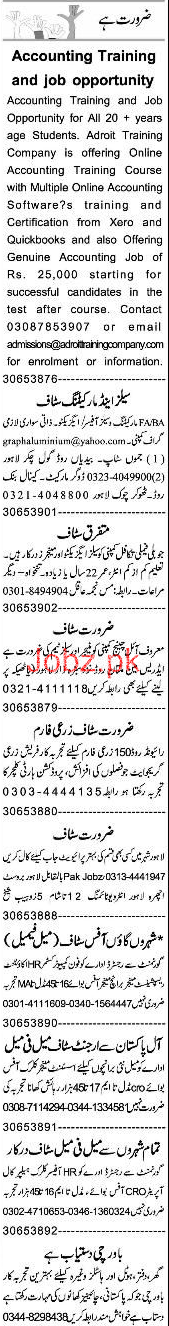 Accountant, Sales Executive, Marketing Officer Wanted