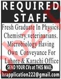 Fresh Graduates Required