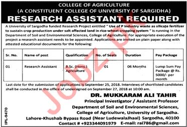 Research Assistant for University of Sargodha