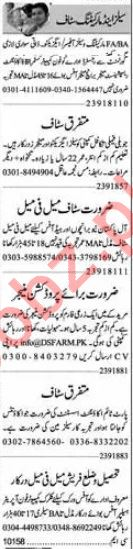 Dunya Sunday Classified Ads 2018 for Sales & Marketing Staff