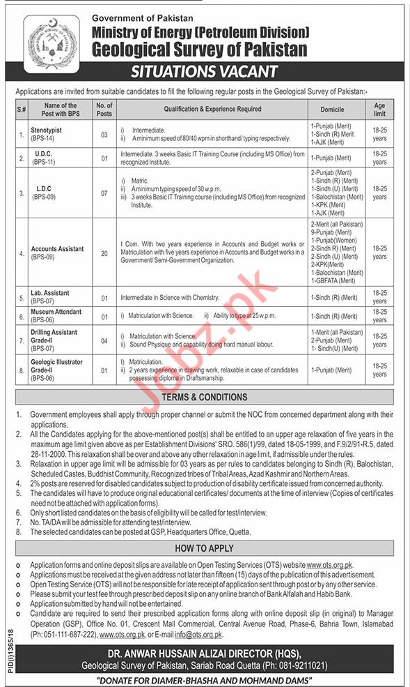 Ministry of Energy Petroleum Division Jobs 2018 via OTS