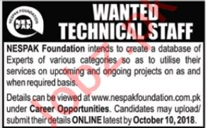 NESPAK Foundation Islamabad Jobs for Technical Staff