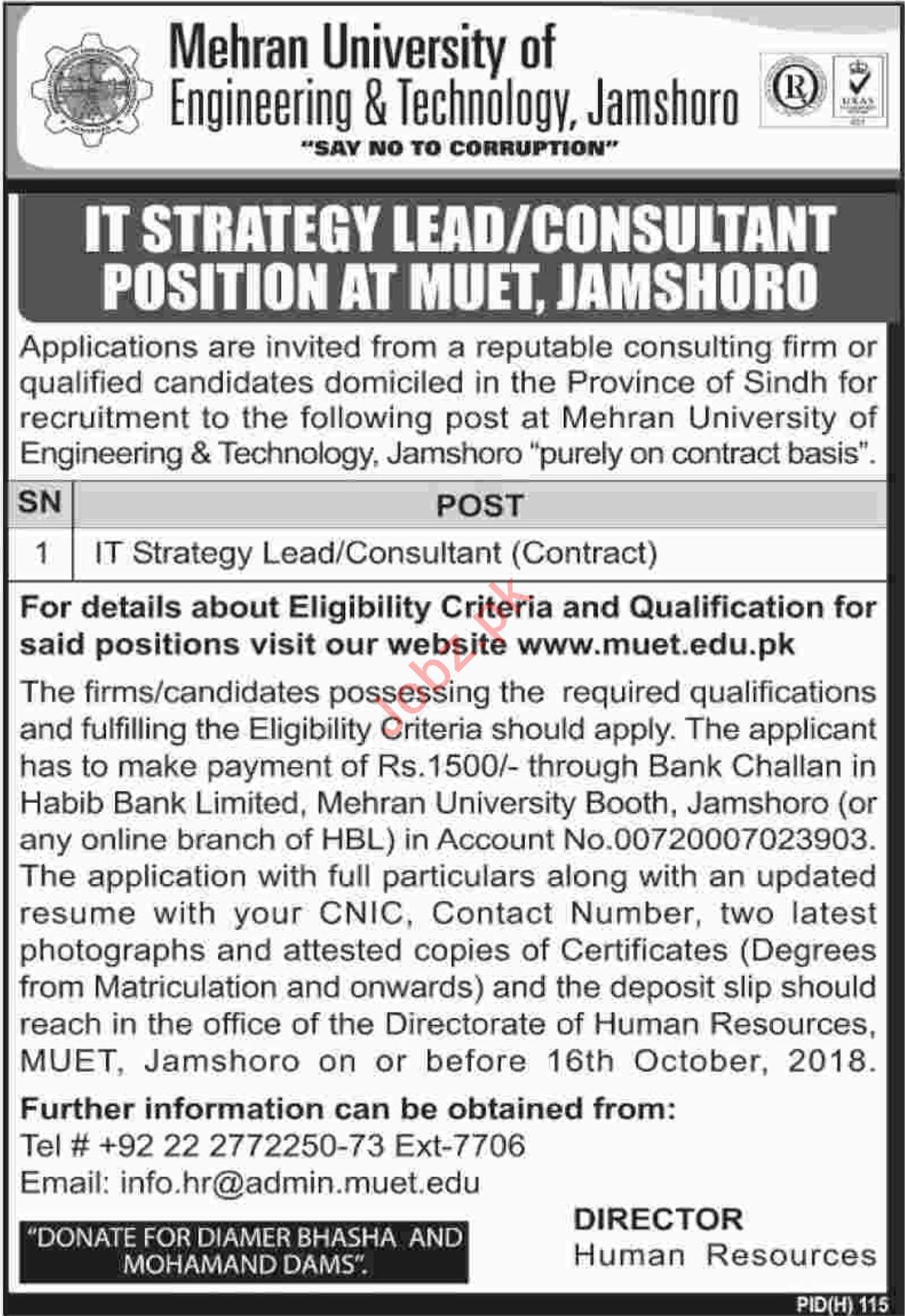 Mehran University of Engineering & Technology Jamshoro Jobs