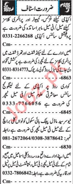 Teachers, Receptionist, Principal & Qaria Jobs in Quetta