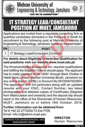 Mehran University of Engineering & Technology Consultant Job