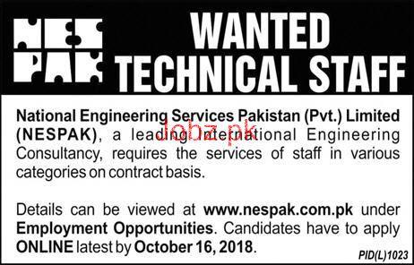 National Engineering Services Pakistan NESPAK Job 2018