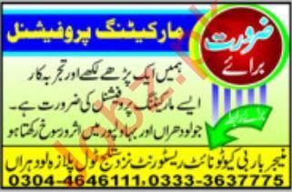 Marketing Professional Job 2018 in Lodhran