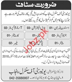 Assistant Foreman Jobs in University of Central Punjab