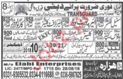 Steel Fixer, Airport Loader, Aircraft Cleaner & Loader Jobs