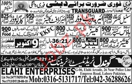 Steel Fixer, Airport Loader & Cargo Loader Jobs Open