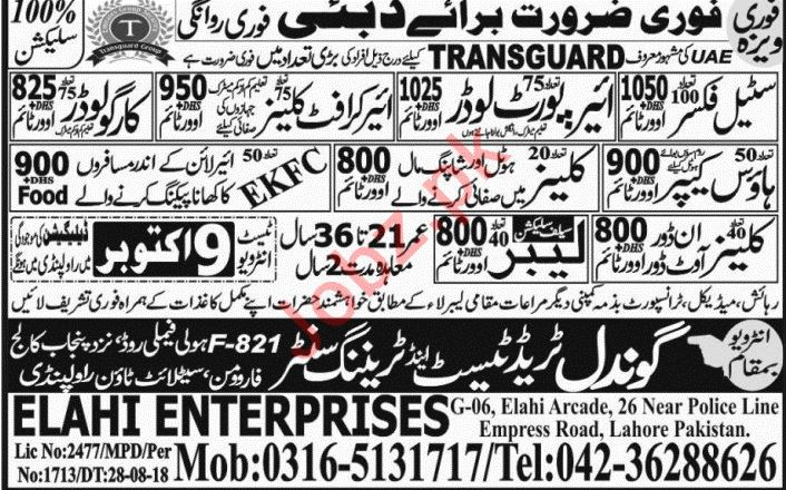 Steel Fixer, Airport Loader, House Keeper & Cleaner Jobs