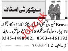 Security Guard Jobs in Private Company