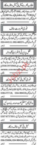 HR Officer jobs in Private Company