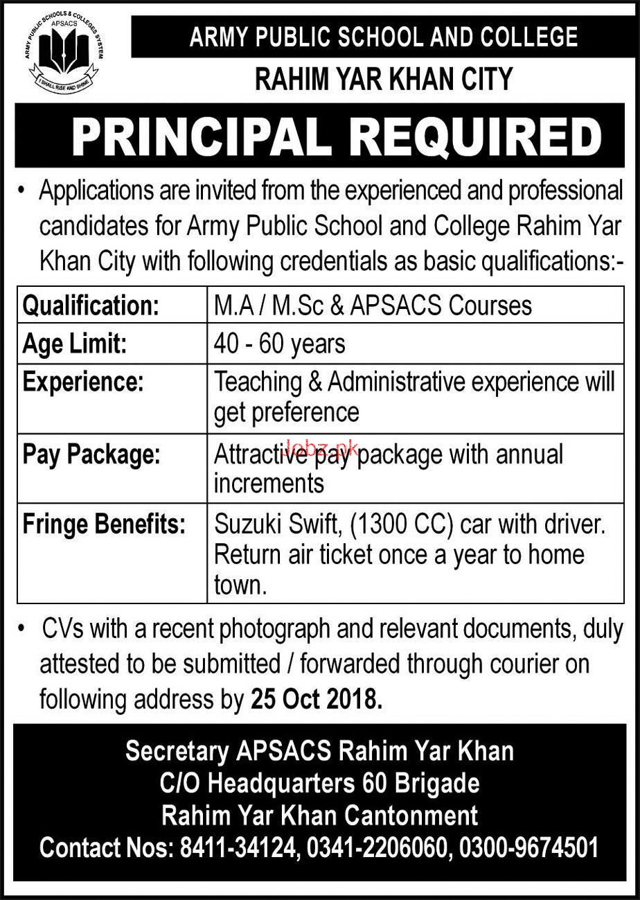 Army Public School and College APS Rahim Yar Khan Cant Jobs