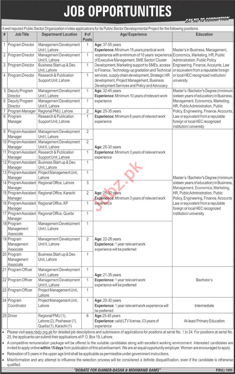 Project Director for Public Sector Developmental Project