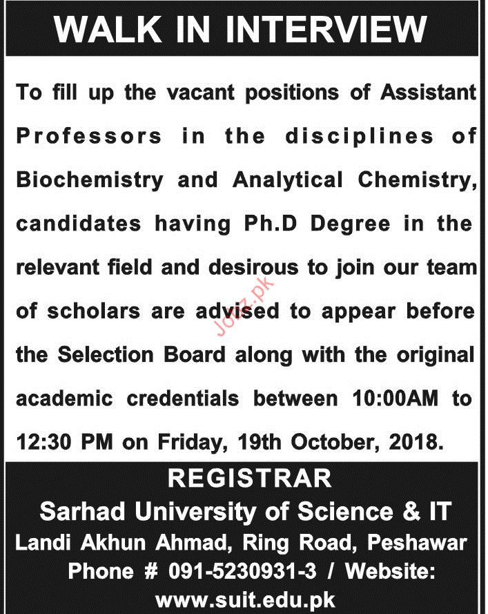 Assistant Professor Jobs in Sarhad University of Science