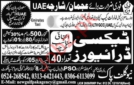 LTV Taxi Driver Jobs Career Opportunity