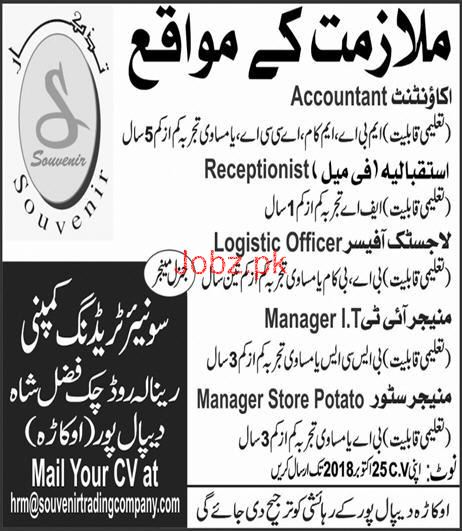 Souvenir  Trading Company Accountant, Manager IT Jobs