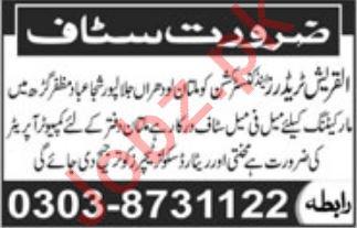 Al Quresh Traders Marketing Staff Jobs