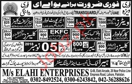 Cleaner, Aircraft Cleaner, Cargo Loader & Labor Jobs 2018