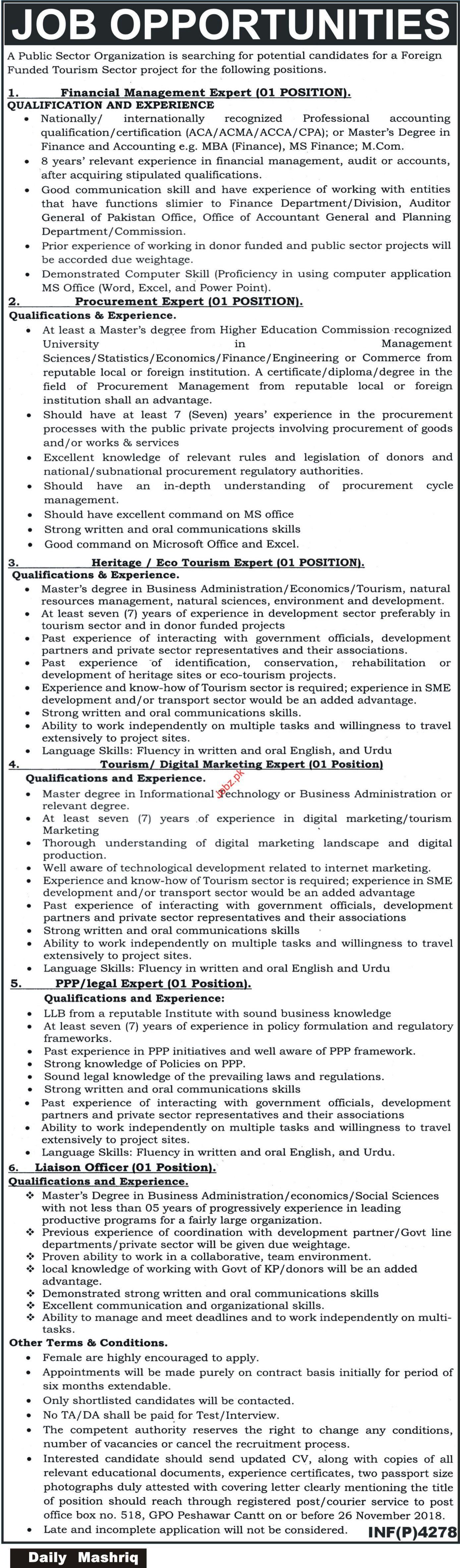 Pubic Sector Organization Financial Management Expert Jobs