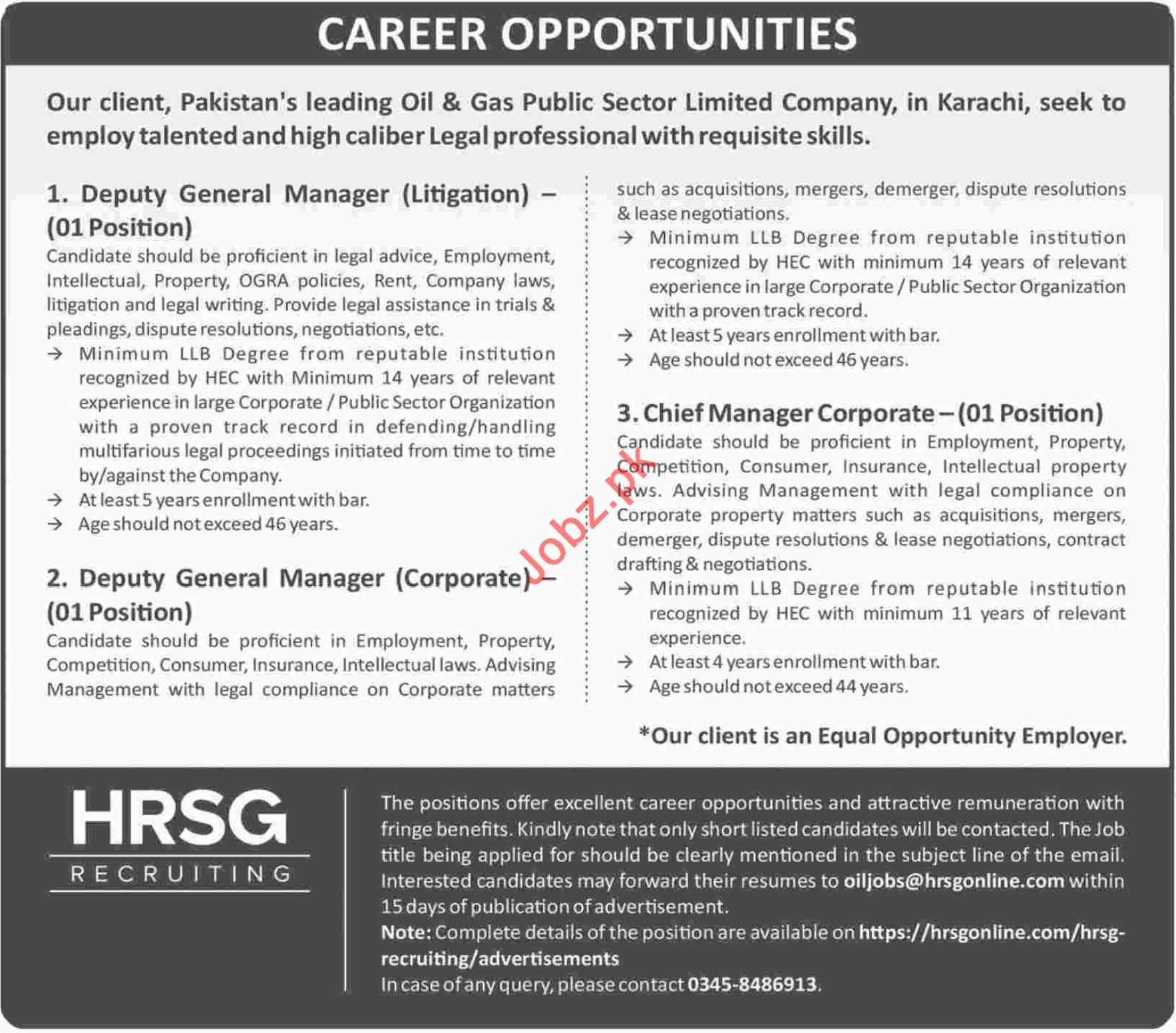 HRSG Recruiting Deputy General Manager Litigation Jobs