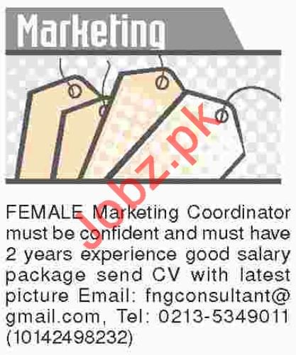 Dawn Sunday Newspaper Classified Marketing Jobs 2018