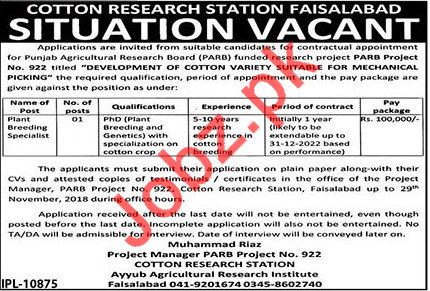 Cotton Research Station Faisalabad Specialist Job 2018