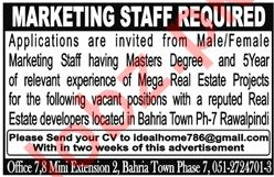 Marketing Staff for Real Estate Firm