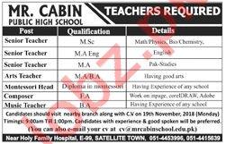 Mr Cabin Public High School Math Teacher Jobs