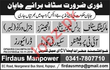 Marketing Staff, Business Management Staff & Engineer Jobs