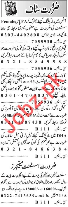 Daily Jang Newspaper Classified Ads 2018 In Lahore