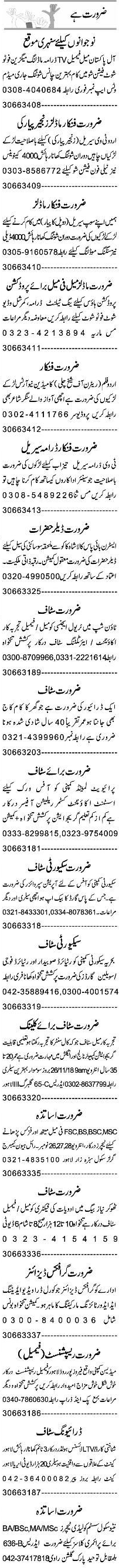 Accountant, Assistant, Security Guard Job Opportunity