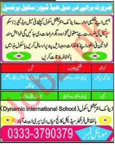 Dynamic International School Head Teachers Jobs