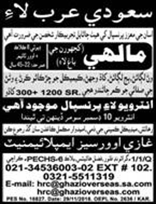 Mali Jobs in Saudi Arabia