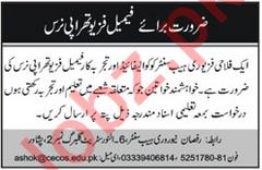 Female Physiotherapy Nurse Job 2019 In Peshawar KPK